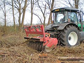 Een voorbeeld van Landschapsbeheer